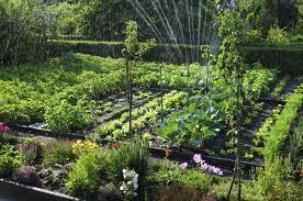 beginner vegetable garden. Beautiful Vegetable Vegetable Gardening Tips For Beginners For Beginner Garden O