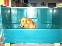 cool dog washing tub bathtub hose for washing dog bathtub hose for washing dog dog bath cool dog washing
