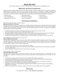 Sales Coordinator Cover Letter Sample Free Download