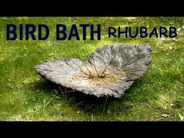 moulding casting concrete bird bath with rhubarb leaves