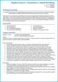digital marketing cv example writing guide and cv template digital marketing cv example