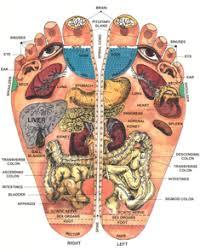 Foot Organ Chart Reflexology Chart Of Foot Foot Reflexology Chart My