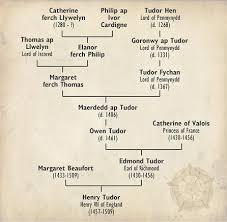 best uk genealogy images family history side of tudor family tree showing owen tudor bore royal welsh blood