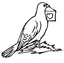 Small Picture Pigeon Coloring Book Pages Coloring Coloring Pages