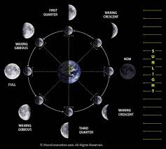 Lunar Phase Chart Moon Phases Lunar Phases Explained