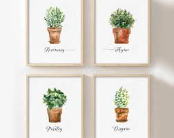 set of 4 herb printables watercolor herb collection kitchen decor herb wall signs oregano