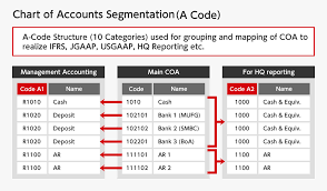 Chart Of Accounts Code Structure