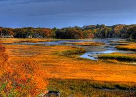 182 Best Fall On Cape Cod Images On Pinterest  Cape Cod Capes Weather Cape Cod October