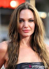 Angelina Jolie Hair Style angelina jolie hairstyle easyhairstyler 6936 by wearticles.com