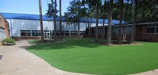 artificial turf yard. Unique Yard In Artificial Turf Yard