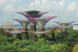 singapore supertree grove in garden b the bay