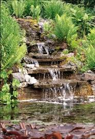 Small Picture Pondless Waterfall Love it Love it Love it The fallen log