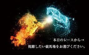 川崎 競馬 ライブ 中継