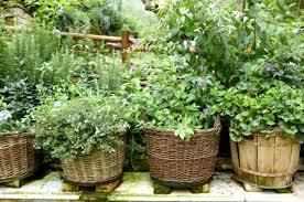 {Recycled & Repurposed Material Herb Gardens}