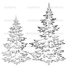Pine tree coloring page best of pine tree drawings black and white pine tree coloring page best of pine tree drawings black and white of pine tree coloring