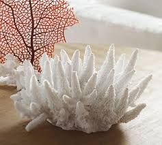 Seaside Decorative Accessories 100 best Coastal images on Pinterest Beach houses Starfish and 25