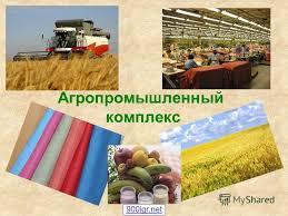 Промышленность Реферат Скачать Пищевая Промышленность Реферат Скачать