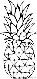 pineapple drawing step by step. pineapple black and white ideas about drawing on step by clip art