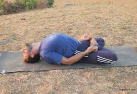 Image result for fish Pose for back pain