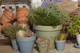 Garden Pots Buyers Guide To Plant Pots Help Ideas Diy At Bq