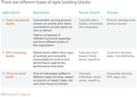 The Five Trademarks Of Agile Organizations Mckinsey