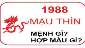 Sinh năm 1988 hợp màu gì? Bật mí màu sơn nhà đúng chuẩn dành cho tuổi Mậu  Thìn 1988