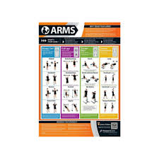 Marine Fitness Chart Posterfit Arms Chart
