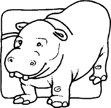 Small Picture Perfect Hippo Coloring Pages Best Coloring Boo 2936 Unknown