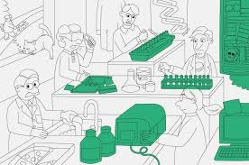 quality assurance technicians how quality control could save your science nature news