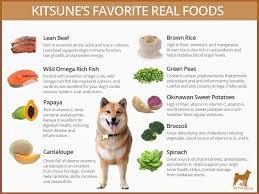 Shiba Inu Growth Chart Best Dog Food For Shiba Inus Dog Cakes Dog Cake Recipes