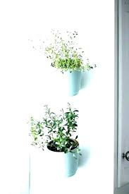 wall mounted plant holders indoor wall plant holders wall mounted plant holder wall mount plant holder wall mounted planters alluring wall mounted metal