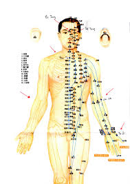 Hijama Cupping Points Chart Cupping Therapy For Flu Stay Away From Medicines Com