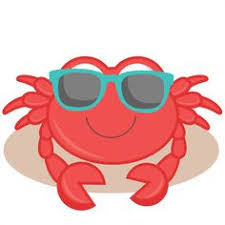 Red Crab with sunglasses