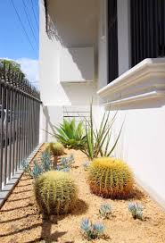 Small Picture Waterwise Garden Design by Outdoor Establishments Sydney