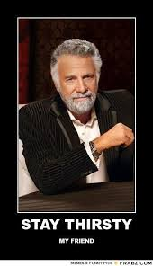 Most Interesting Man In The World Quotes Custom STAY THIRSTY The Most Interesting Man In The World Meme