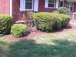 Next Level Landscaping Home Design Lawn Sprinkler Installation Repair Montclair Woodbridge