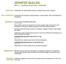 Blogger Resume