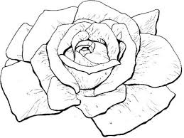 Small Picture Coloring Pages Rose