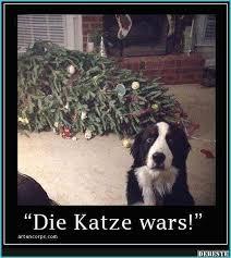 Lustige Hunde Bilder Mit Spruchen Coloringpageideatk