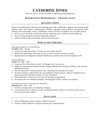 How To Build A Strong Resume Professional Resume Channel Sales 6