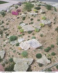 Small Picture Rock Garden Primer Fine Gardening
