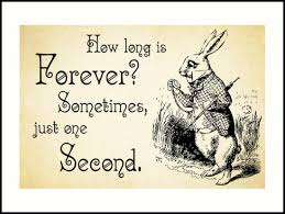 Quotes From Alice In Wonderland Best Alice In Wonderland Quote How Long Is Forever White Rabbit Quote