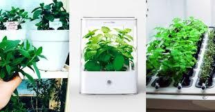 hydroponic herb garden. Exellent Herb To Hydroponic Herb Garden H
