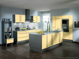 Light Yellow Kitchen Yellow Kitchens Cottage Kitchens Yellow And Gray Grey And Yellow