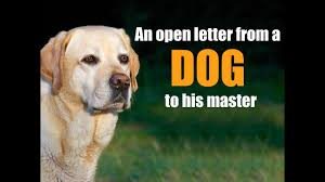 Very Emotional Heart Touching Video Ever An Open Letter From A Dog To His Master Inspirational