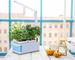hydroponics grower kit diy self watering indoor hydroponics tools dwc hydroponic system planting container grow light soilless culture hydro led garden