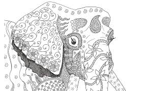 Henna Elephant Coloring Pages Elephant Hard Pattern Elephant