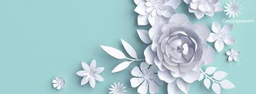 light blue and white flowers facebook cover