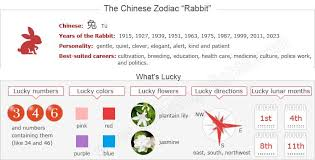 Yearly events » chinese new year » chinese new year ks2. The Year Of The Rabbit Chinese Zodiac Sign For 1951 1963 1975 1987 1999 2011 Chinese Zodiac Rabbit Year Of The Tiger Chinese Zodiac Signs