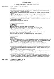 Seo Resume Sample SEO Specialist Resume Samples Velvet Jobs 1
